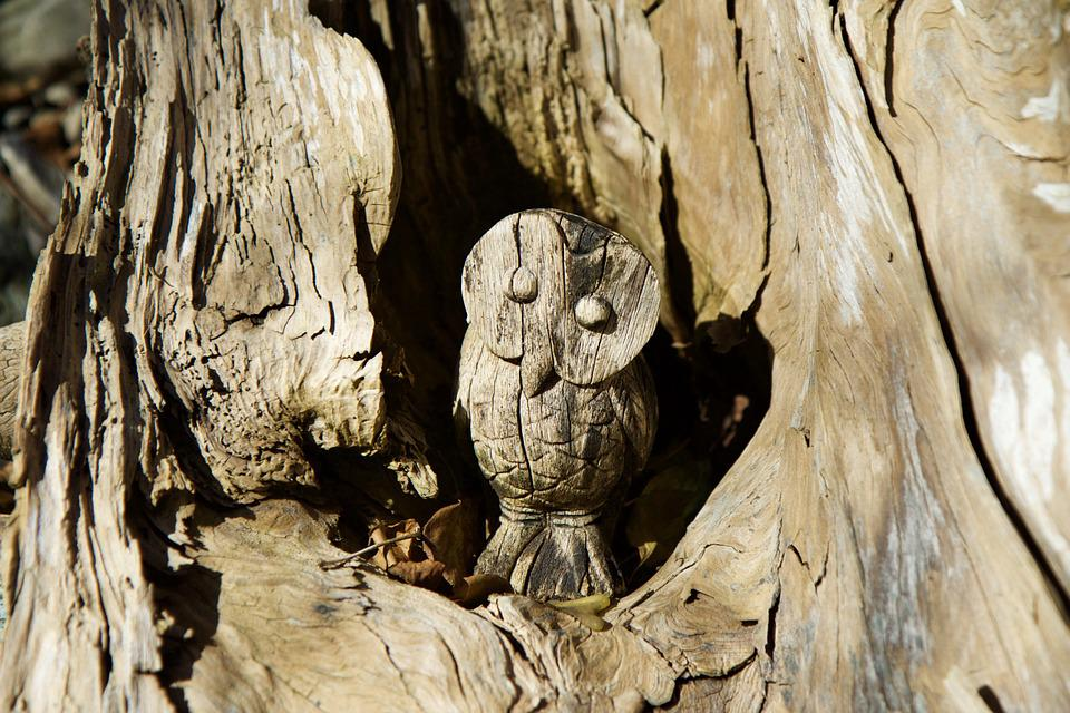 Wood, Log, Rhizome, Carving, Owl