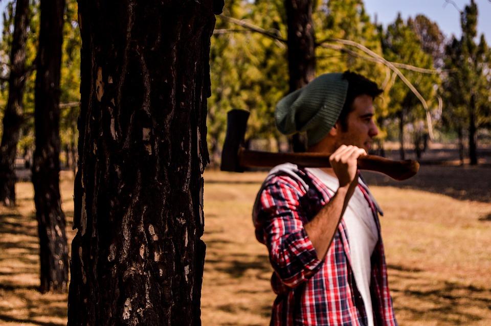 Wood, Axe, Lumberjack, Tree, Hatchet, Timber, Log