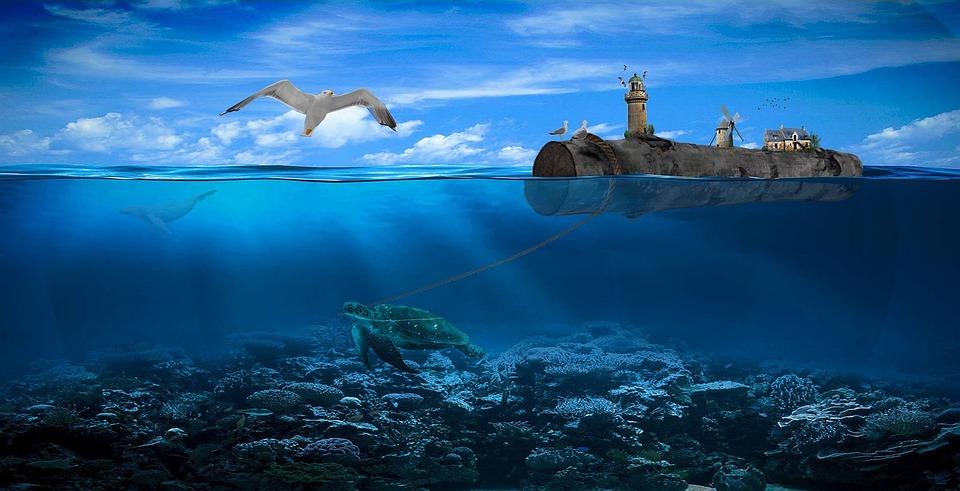 Kassiopaia, Water, Gulls, Tiny, Log, Inject, Photoshop