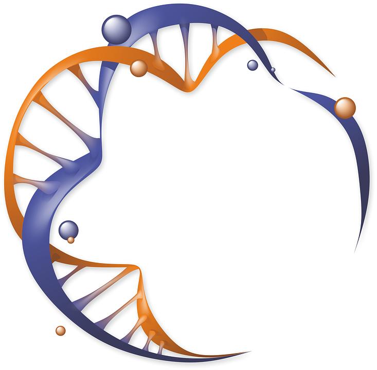 Logo, Dna, Organic, Biology, Science