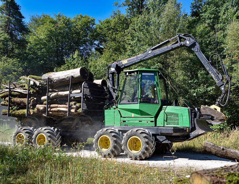 Tractor, Equipment, Forest, Wood, Logs, Transport, Path