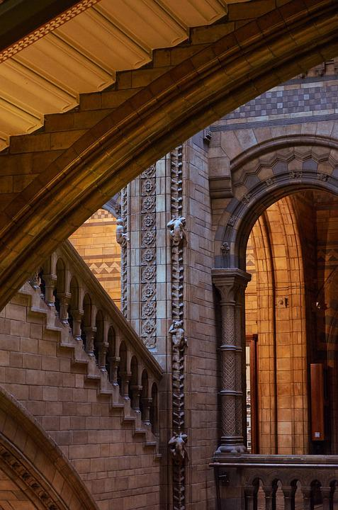 Natural History Museum, London, Staircase