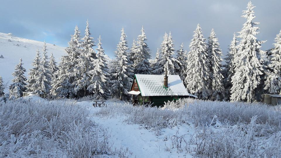 Snowy Country, Loneliness, Chalet, Meadow, Rime, Winter