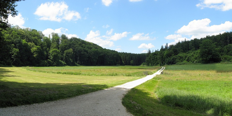 Lonetal, Dry Valley, Summer, Landscape, Swabian Alb