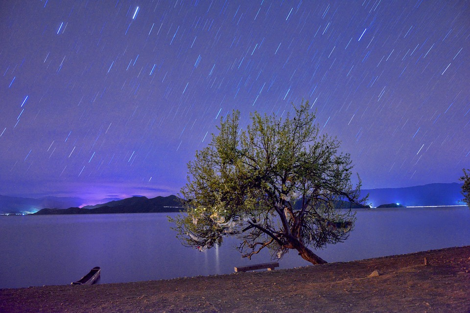 Long Exposure, Star, Night, Starry Sky, Tree, Lake
