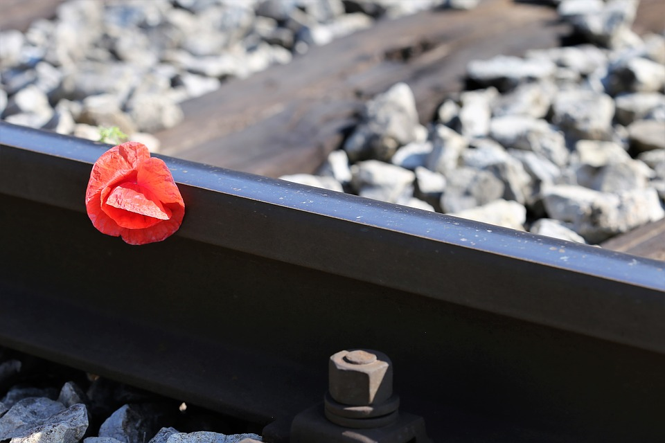 Red Poppy On Railway, Lost Love, Romantic, Touching