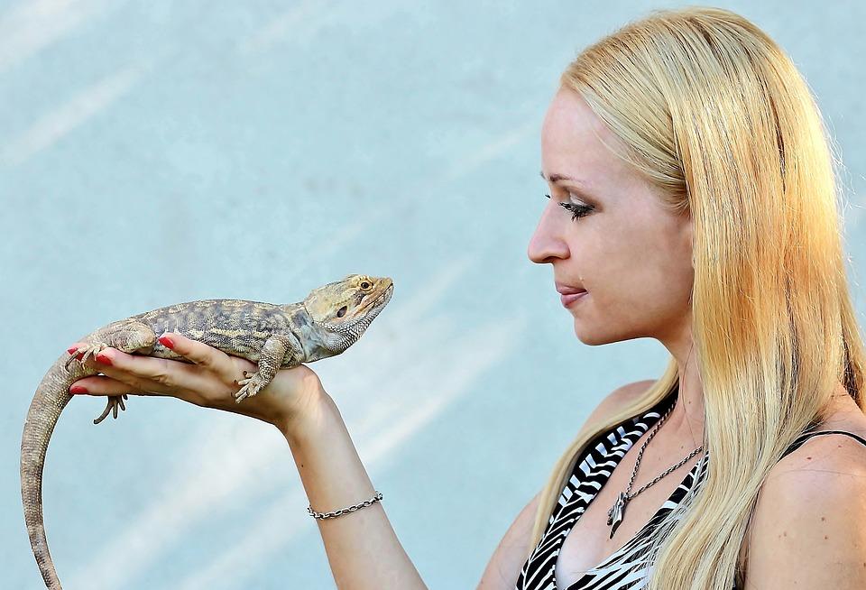 Bearded Dragons, Reptile, Blonde Woman, Love
