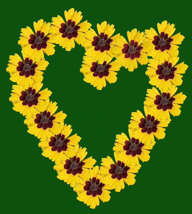 Heart, Flowers, Pattern, Design, Love, Floral, Plant