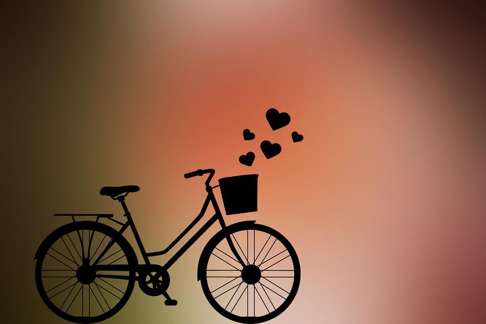 Cycle, Love, Bicycle, Female, Flowers, Basket, Leisure