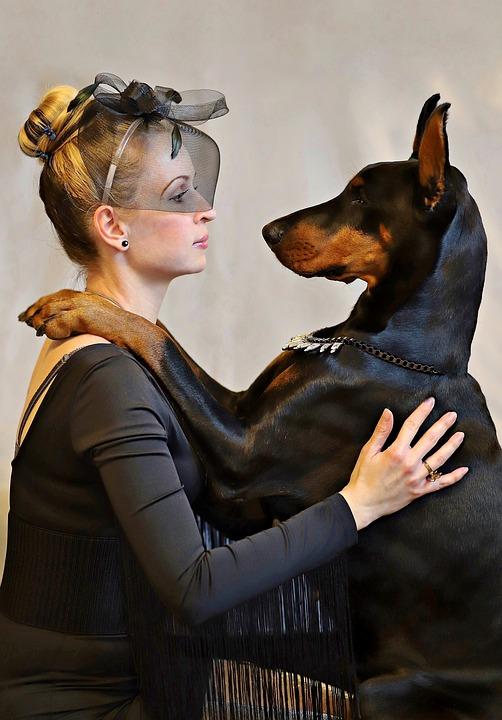 Doberman, Dog, Blonde Woman, Love, Friendship, Elegant