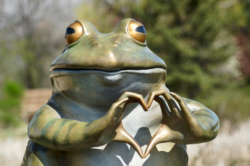Image of: Cute Frog Heart Sculpture Silly Love Nature Animal Max Pixel Free Photo Love Frog Animal Nature Heart Sculpture Silly Max Pixel