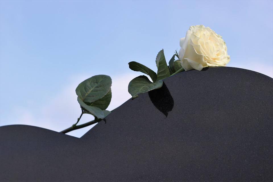 White Rose, Heart Gravestone, Love