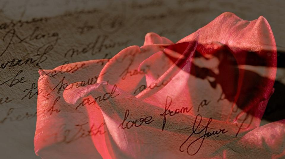 Rose, Red, Red Rose, Love Letter, Handwritten, Spring