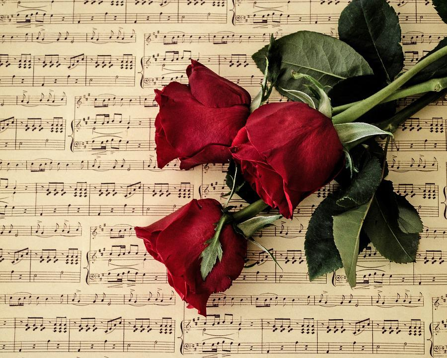 Love, Paper, Romance, Roses, Red Roses, Music
