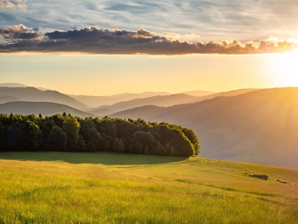 Sunrise, Adventure, Outdoor, Sun, Tree, Forest, Love