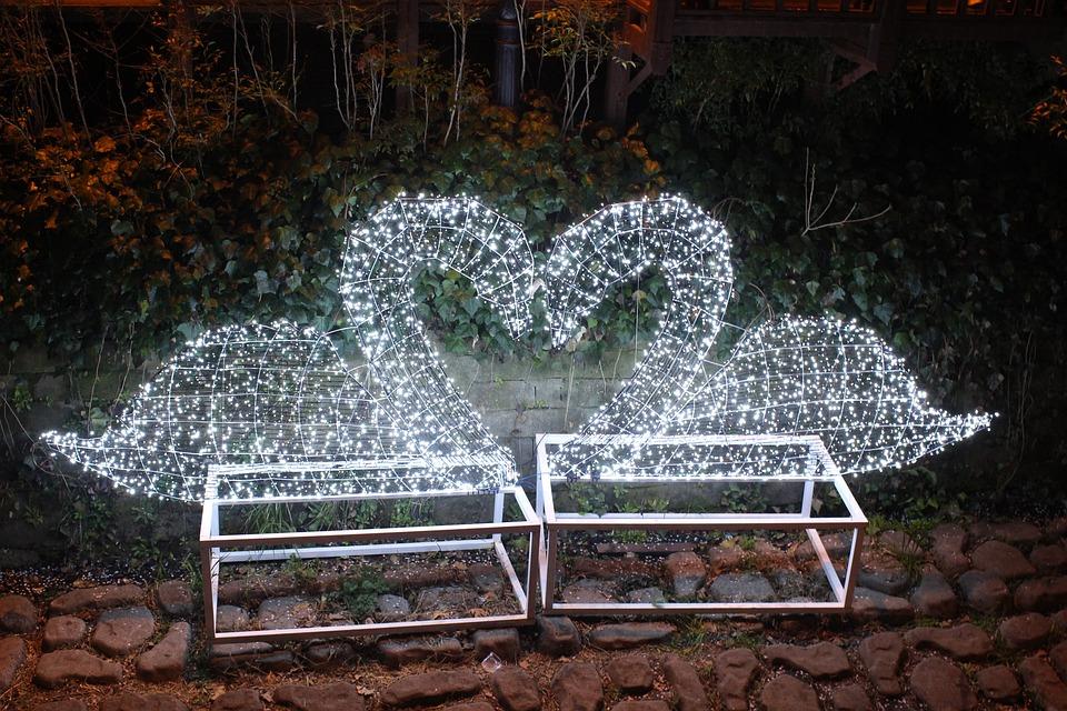 Love, Swan, Hart, Night View, Lighting, Atmosphere