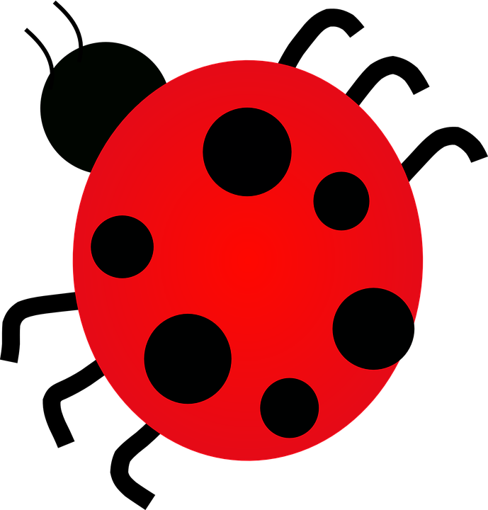 Ladybug, Dots, Insect, Spots, Six, Red, Black, Luck