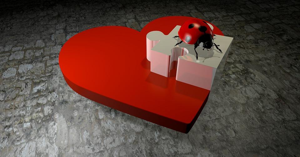 Heart, Puzzle, Love, Luck, Ladybug, Beetle, Lucky Charm