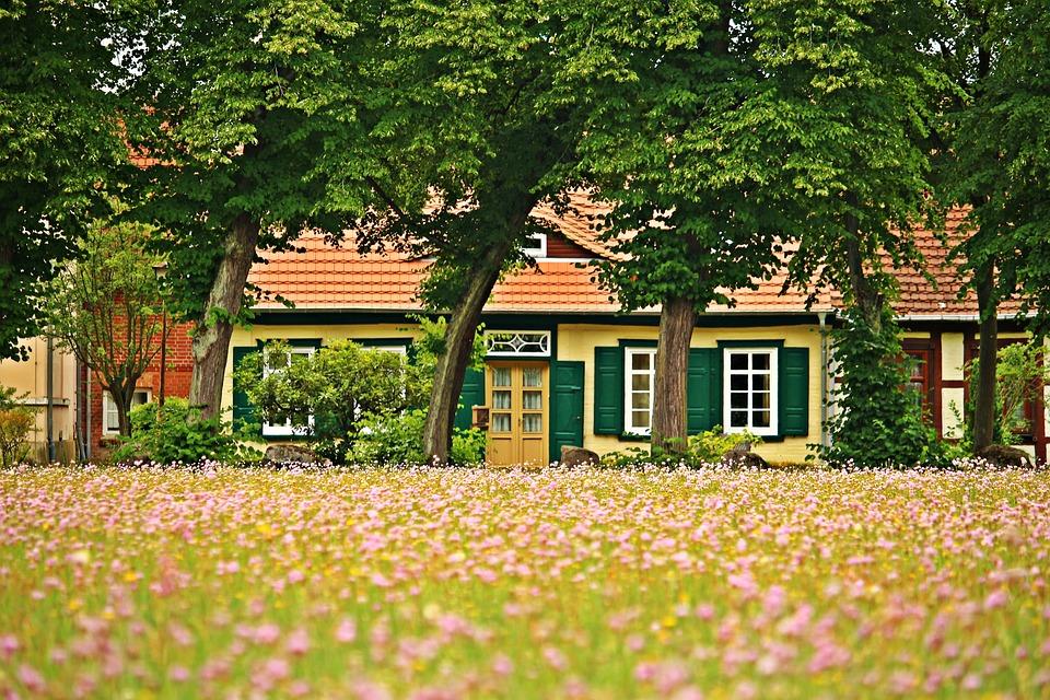 Ludwigslust-parchim, Fachwerkhaus, Flowers, Meadow