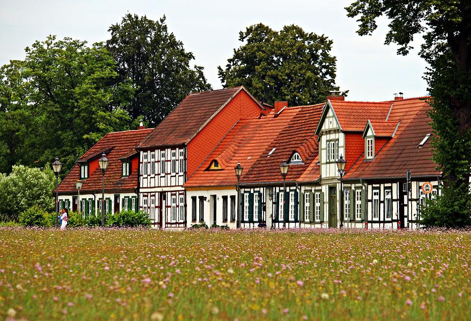 Ludwigslust-parchim, Truss, Home, Meadow, Flowers