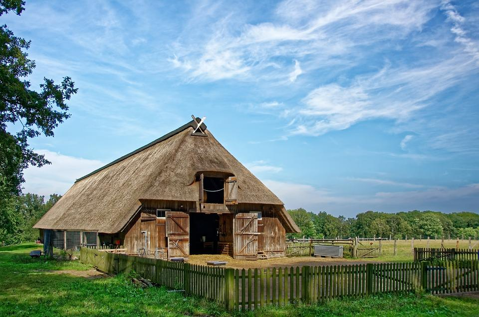 Germany, Lüneburg Heath, Sheep Barn, Nature Reserve