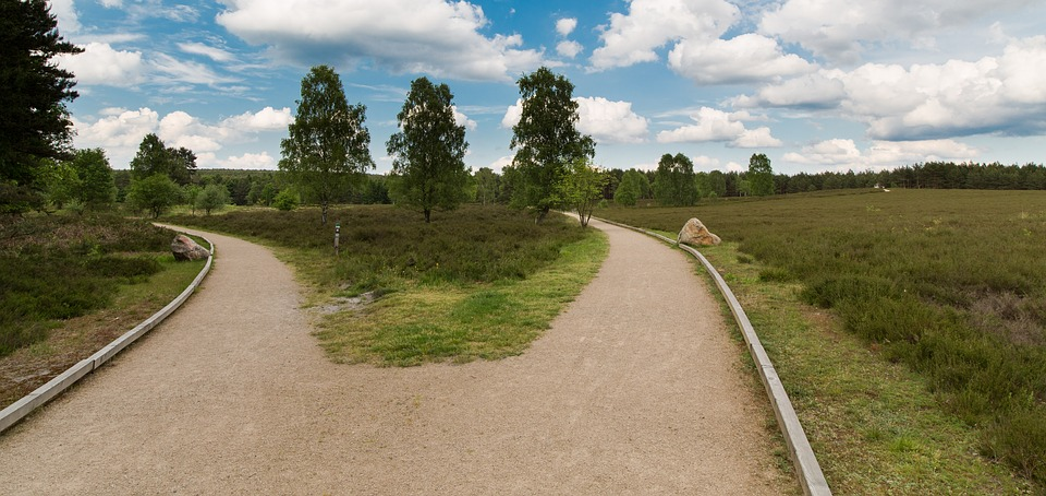 Hermann Burg, South Heath, Trail, Lüneburg Heath, Celle