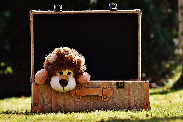 Teddy Bear, Lion, Luggage, Funny, Toys, Stuffed Animal
