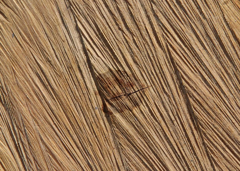Slice, Tree, Wood, Nature, Lumber, Texture, Desktop