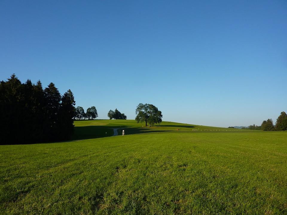 Allgäu, M Farms, Gestratz, Meadow, Pasture, Idyll