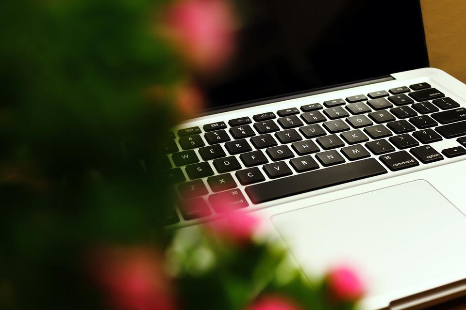 Desk, Laptop, Computer, Macbook, Business, Work, Light
