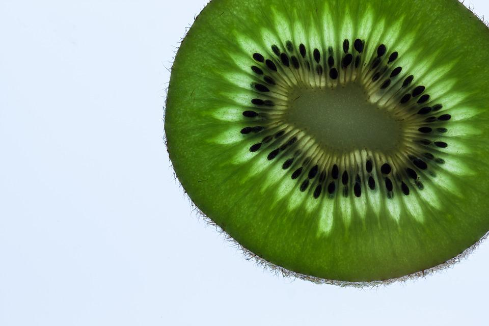 Kiwi, Transmitted Light, Green, Macro