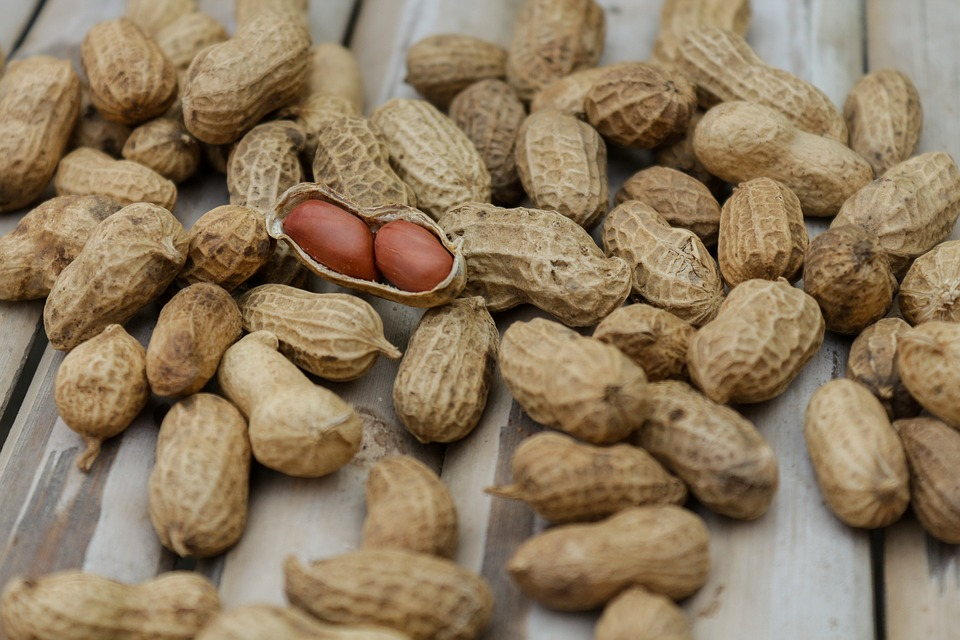 Peanuts, Nuts, Food, Diet, Dry, Macro, Nutrition
