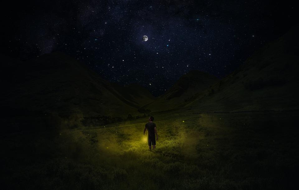 Meadow, Night, Moon, Starry, Sky, Light, Magic, Lantern