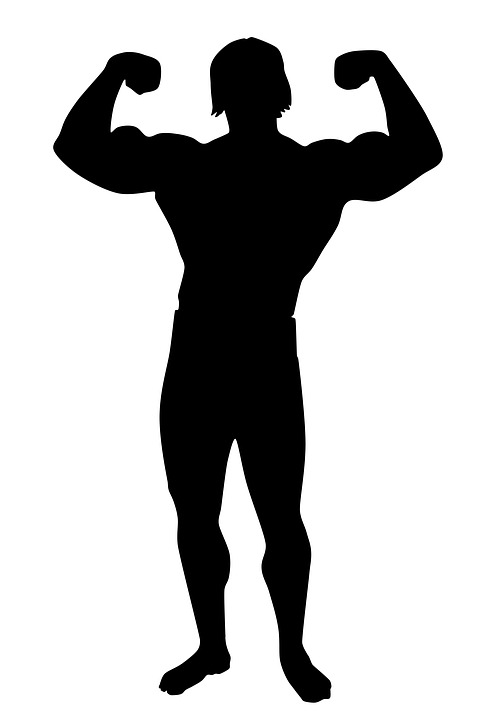 Muscle Bodybuilding Academy Male Silhouette