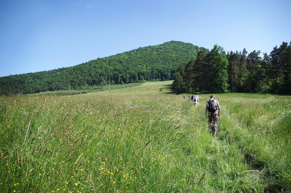 Summer, Wandering, Island Beskids, Malopolska