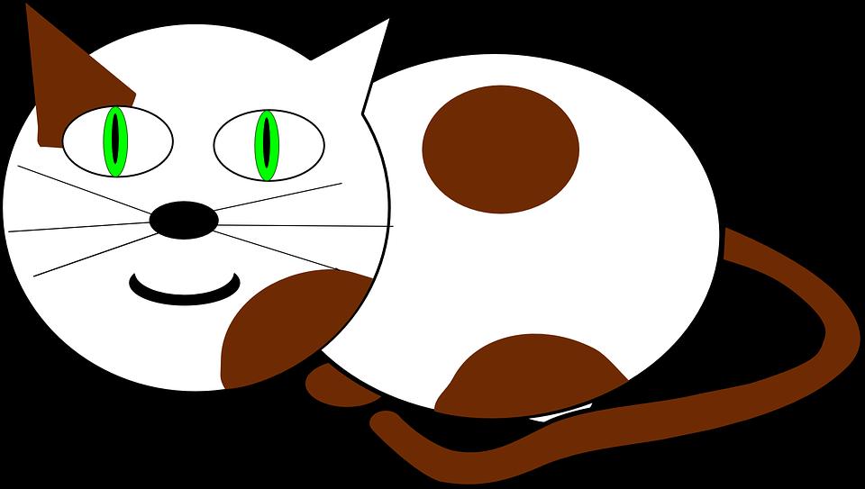 Cat, Meow, Animal, Mammal, Kitty, Feline, Sitting