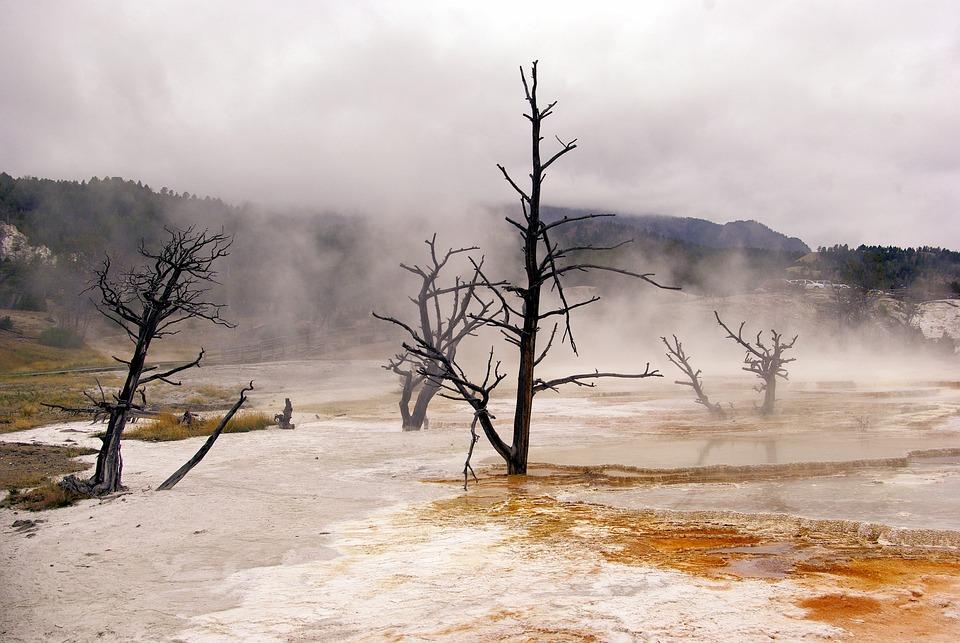 Canary Spring Vapors, Mammoth, Hot, Spring, Yellowstone