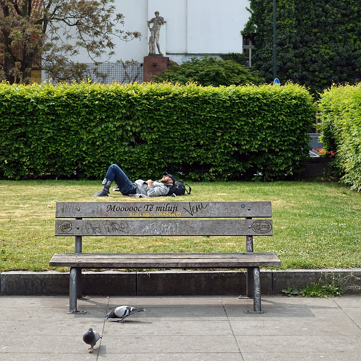 Bench, Park, Still Life, Man, Sleep, On The Grass