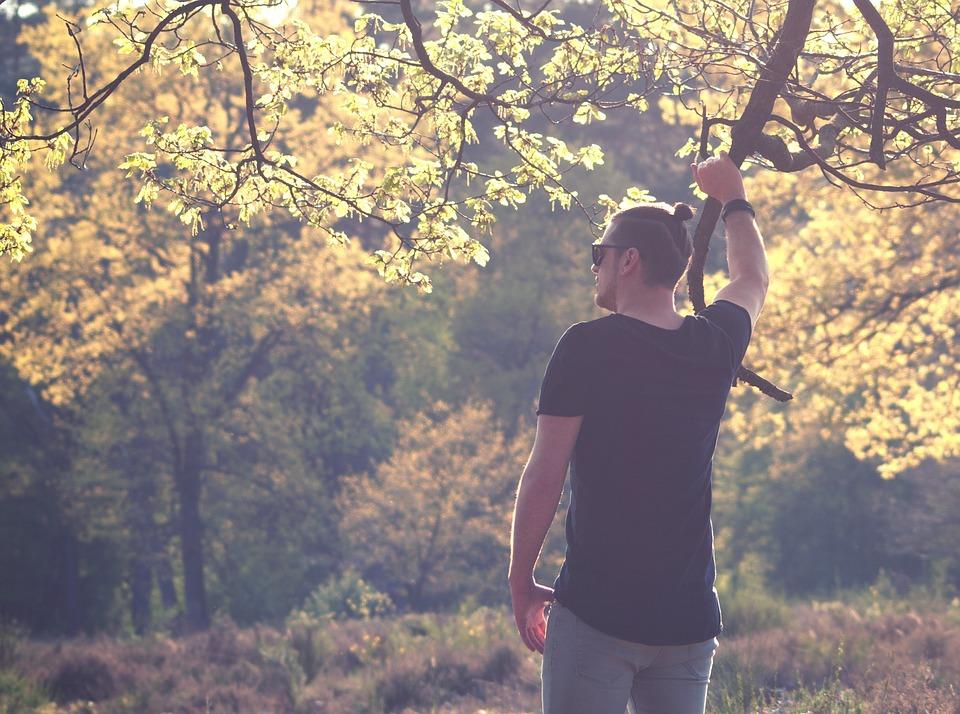 Man, Bun, Summer, Sun, Forest, Nature, Spring, Grass