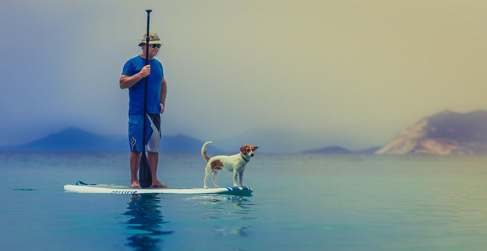 Standup Paddleboarding, Man, Dog, Friendship, Companion