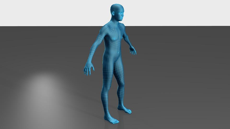 Man, Figure, Body, Net
