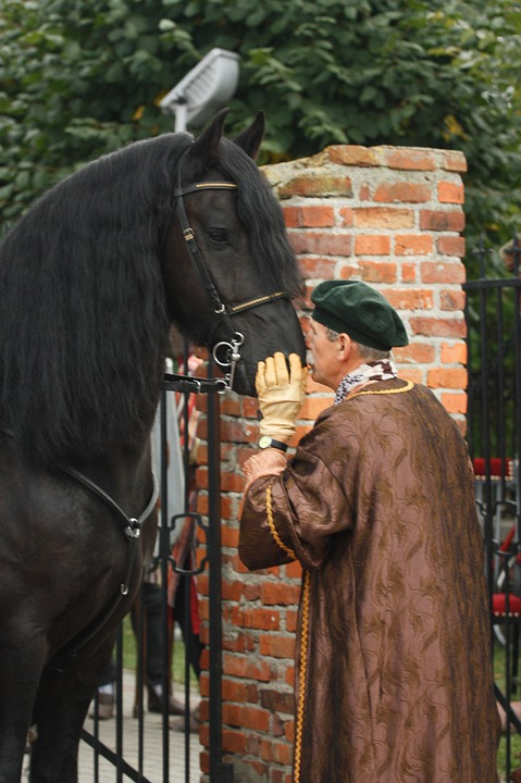 The Horse, Horse Head, Man, Cmoknięcie, Friendship