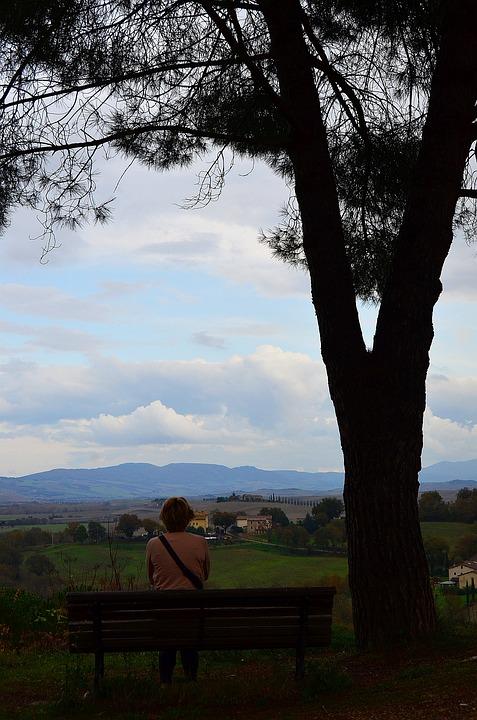 Tree, Man, Bench, Far Away, Mountains, Hills, Italy