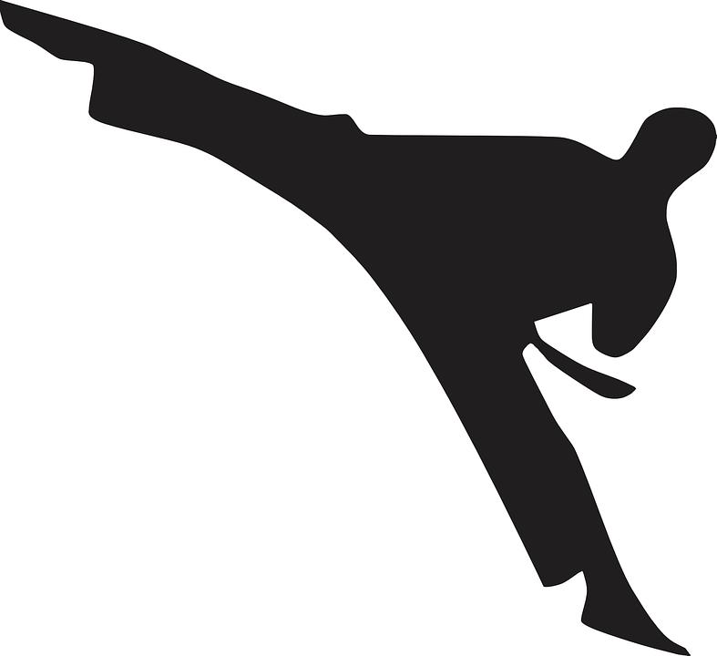 Karate, Martial, Arts, Defense, Belt, Man, Sport, Male