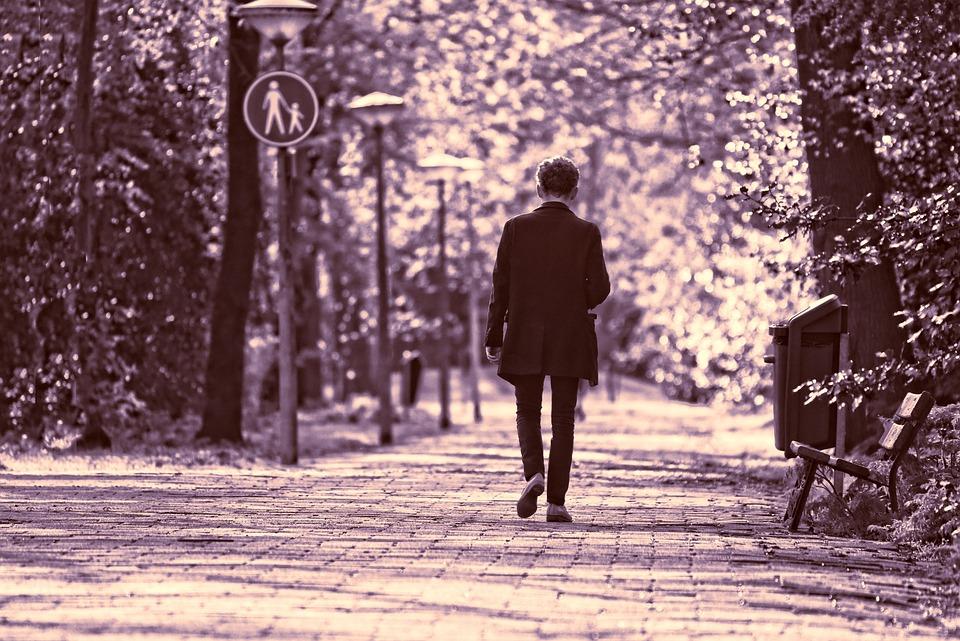 Man, Person, Walking, Motion, Movement, Lane, Tree