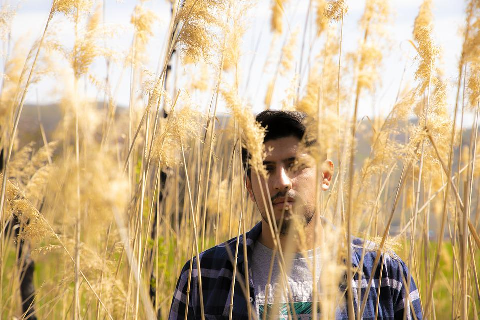 Beauty Of Nature, Boy, Common Reed, Man On Garden