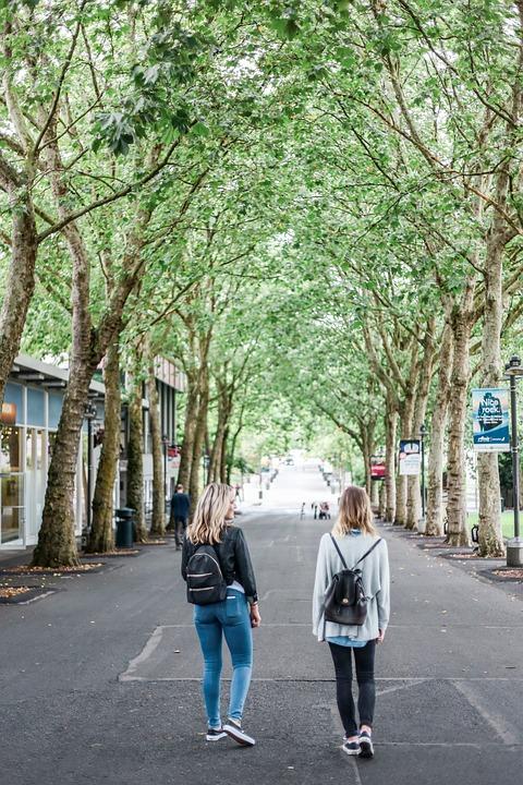 People, Girls, Friends, Walking, Man, Road, Street