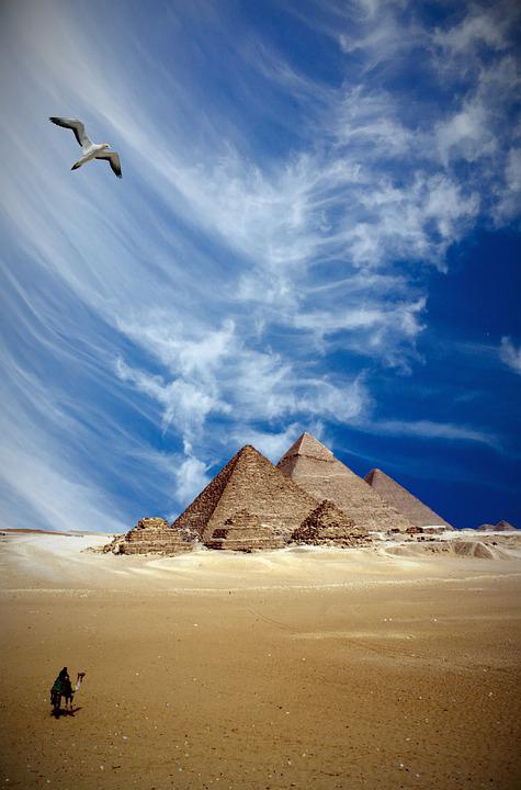 Pyramids, Egypt, Camel, Bird, Man, Desert, Sand