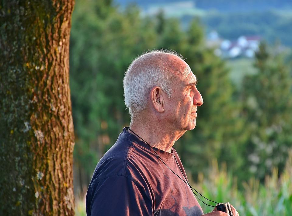 Senior, Man, Male, Hiking, In Retirement, Nature
