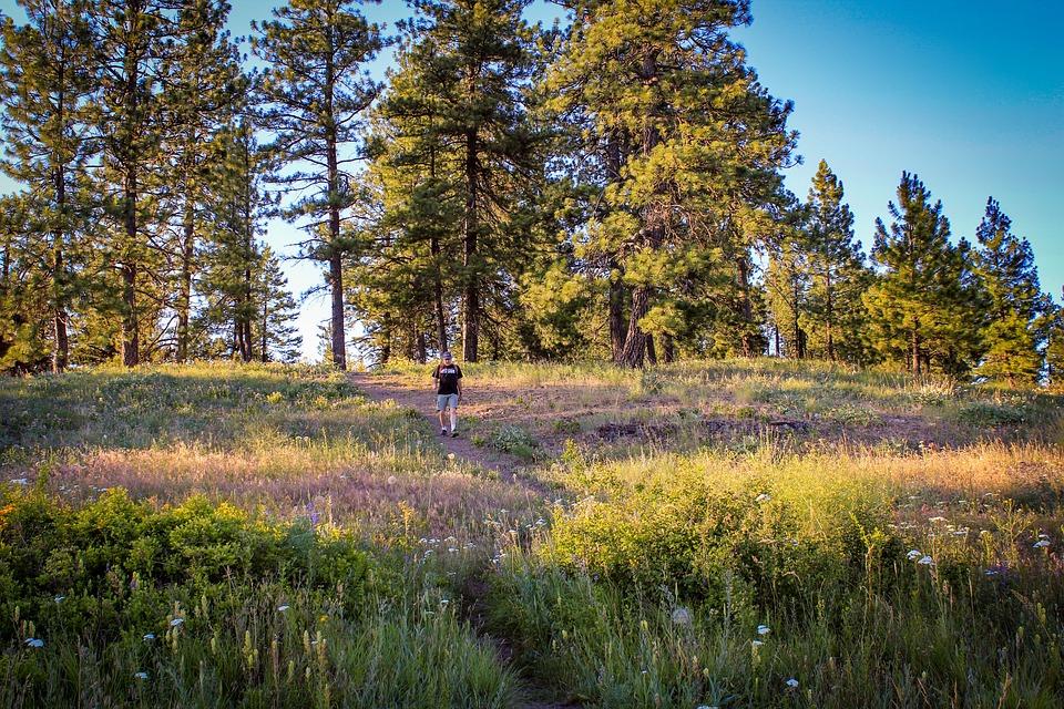 Hiking, Quartzite Mountain, Chewelah, Washington, Man